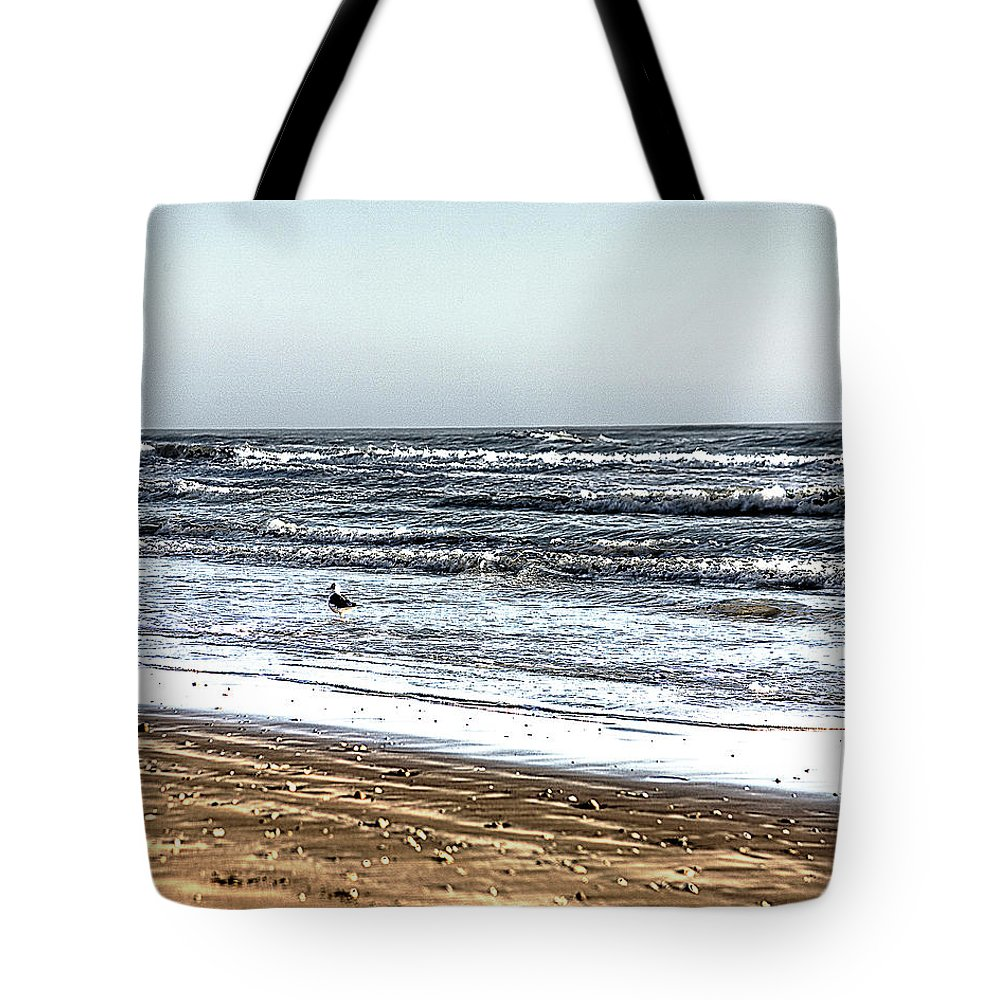 Bird Tote Bag featuring the photograph Birds On Beach 2 by Darrell Mcgahhey