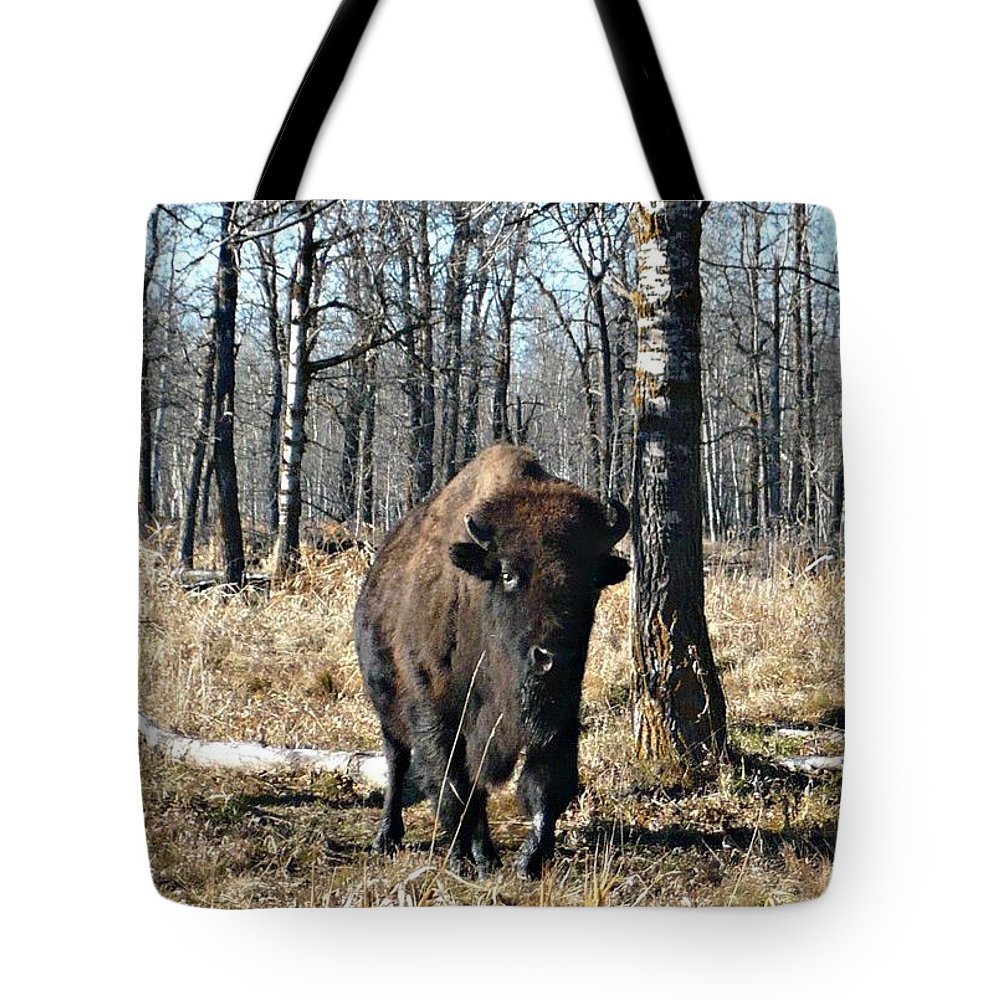 Bison Tote Bag featuring the photograph Bison by 'REA' Gallery