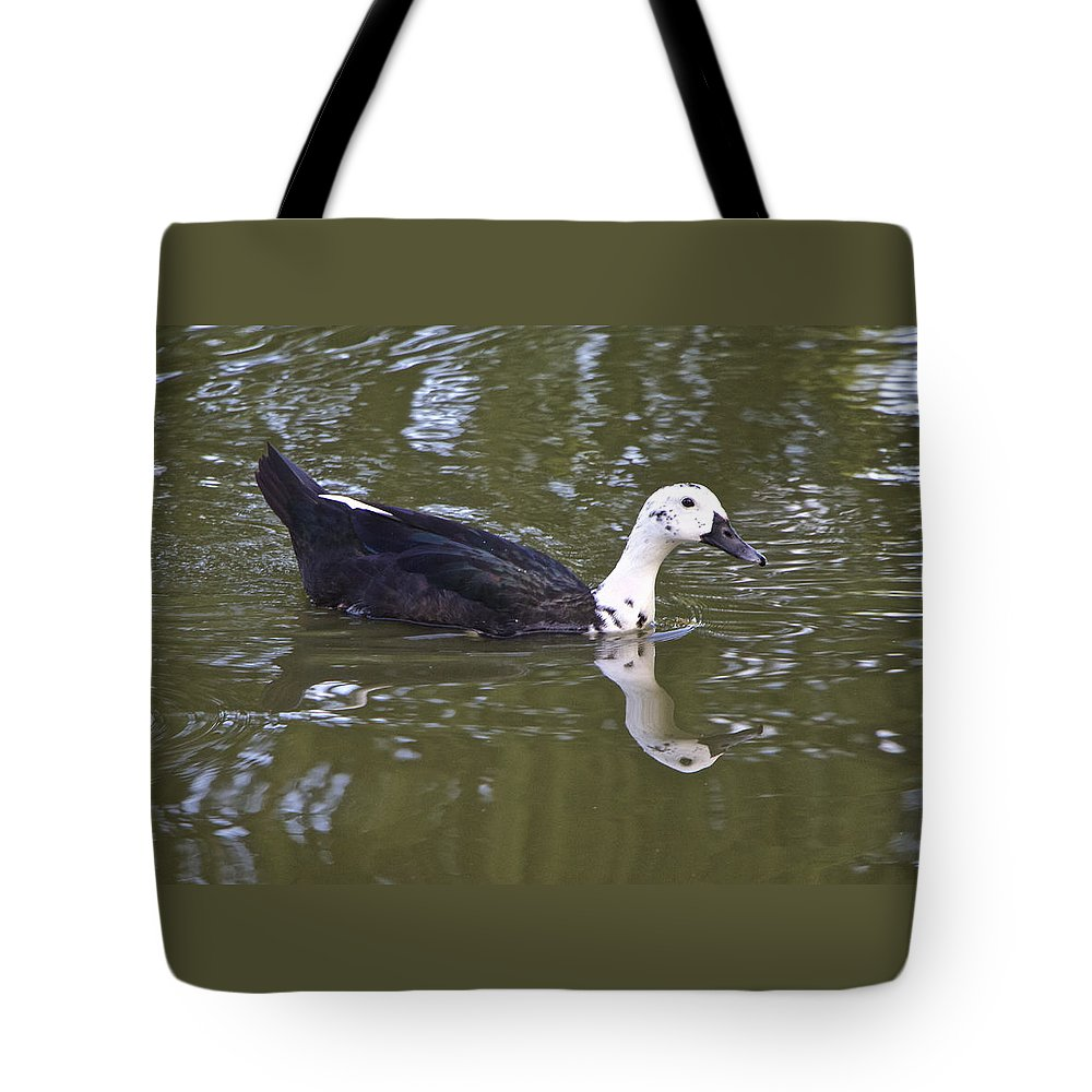 Duck Tote Bag featuring the photograph Black And White Duck Reflections by Venetia Featherstone-Witty