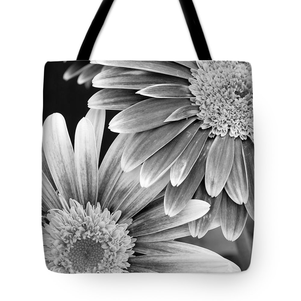 Flower Tote Bag featuring the photograph Black And White Gerber Daisies 3 by Amy Fose