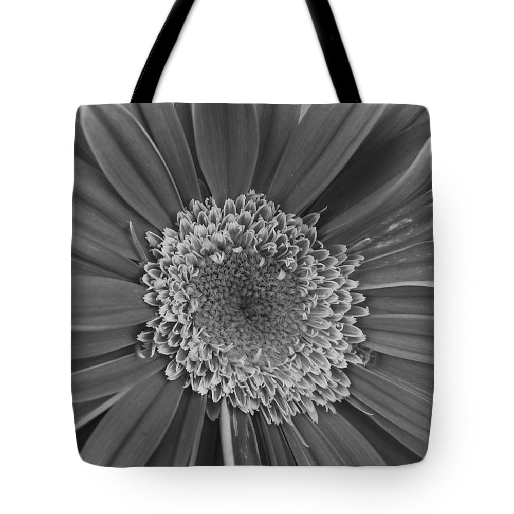 Flower Tote Bag featuring the photograph Black And White Gerber Daisy 4 by Amy Fose