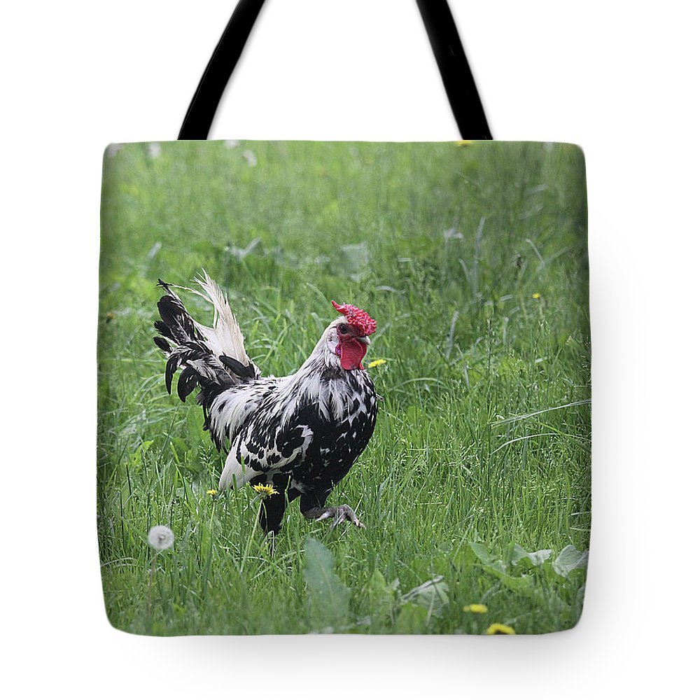 Chicken Tote Bag featuring the photograph Black And White by Jean Macaluso