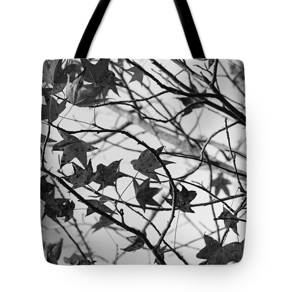 Leaves Tote Bag featuring the photograph Black And White Leaves by Carol Groenen