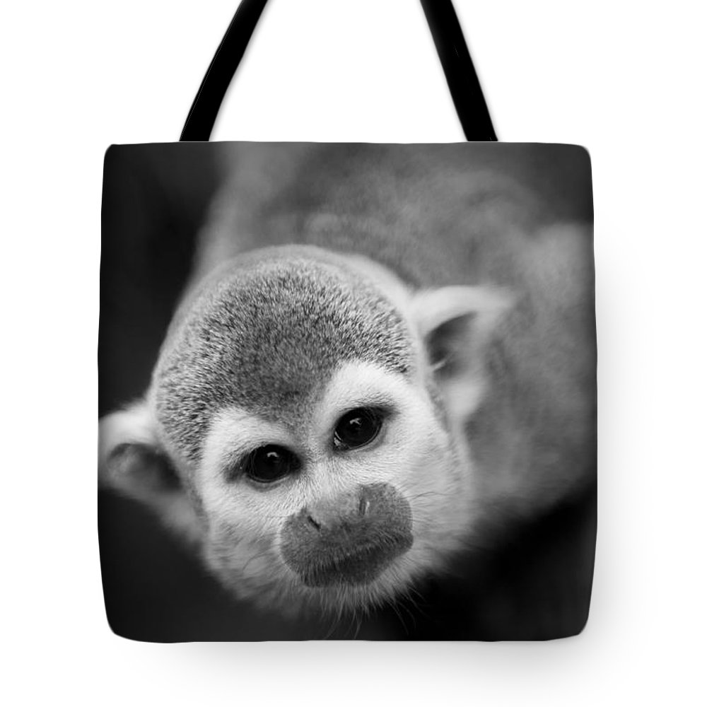 Animals.monkeys Tote Bag featuring the photograph Black And White by Lina Christa