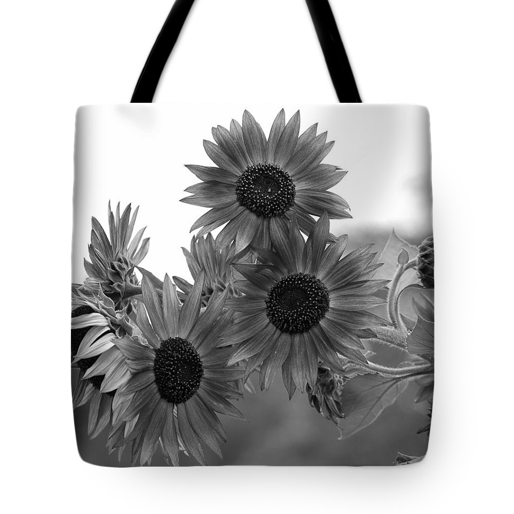 Flower Tote Bag featuring the photograph Black And White Sunflowers by Amy Fose