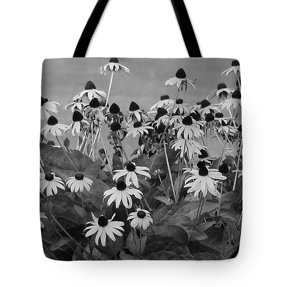 Tote Bag featuring the photograph Black And White Susans by Luciana Seymour