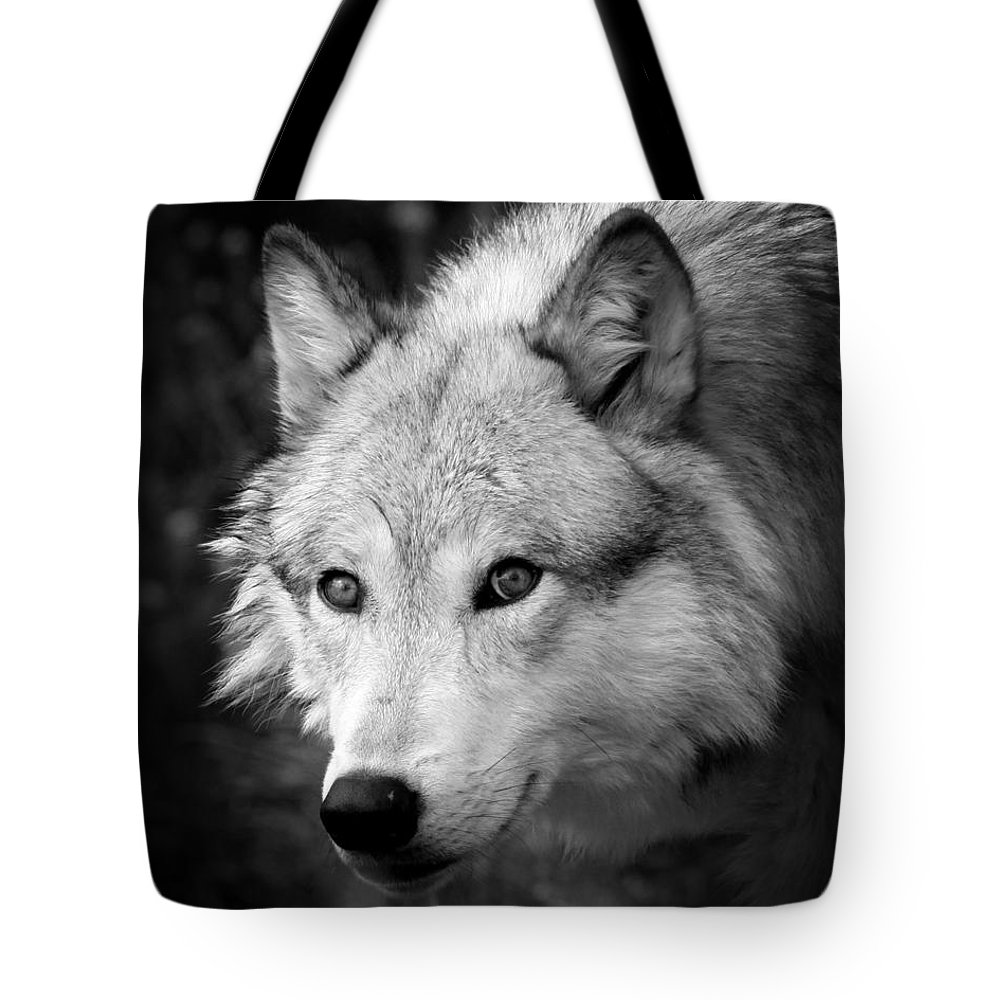 Wolf Art Tote Bag featuring the photograph Black And White Wolf by Steve McKinzie