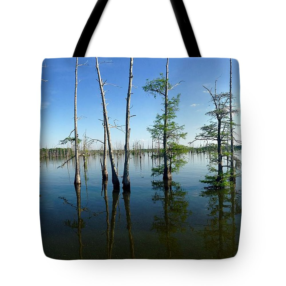 Landscape Tote Bag featuring the photograph Black Bayou Lake 2 by Megan Joffrion