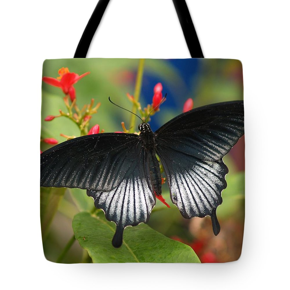 Butterfly Tote Bag featuring the photograph Black Beauty by Gaby Swanson