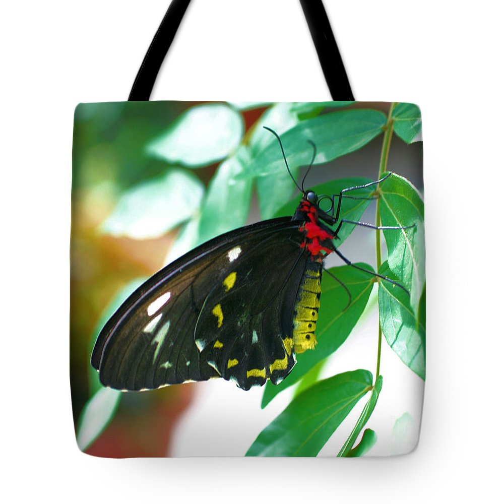 Butterfly Tote Bag featuring the photograph Black Butterfly by Smilin Eyes Treasures