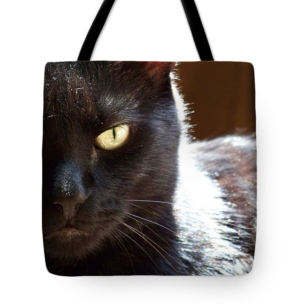 Black Cat Tote Bag featuring the photograph Black Cat by Jai Johnson