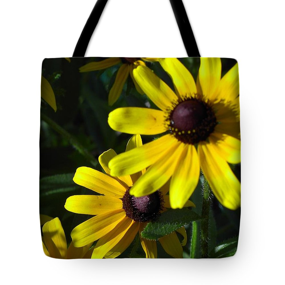 Charity Tote Bag featuring the photograph Black Eyed Susan by Mary-Lee Sanders