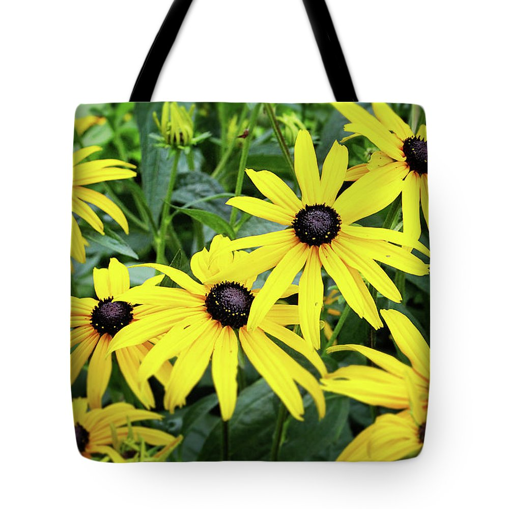 Daisies Tote Bag featuring the photograph Black Eyed Susans- Fine Art Photograph By Linda Woods by Linda Woods