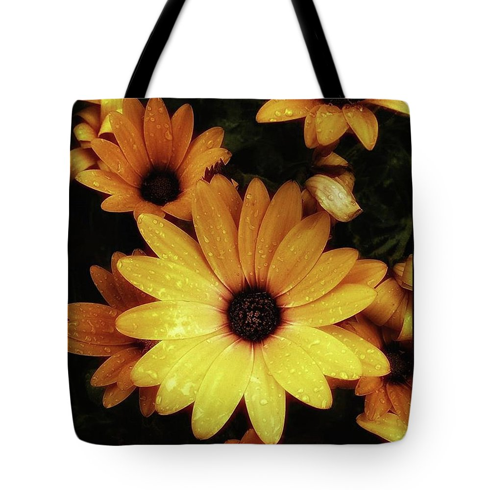 Flowers Tote Bag featuring the photograph Black Eyed Susans. Looks Like They're by Mr Photojimsf