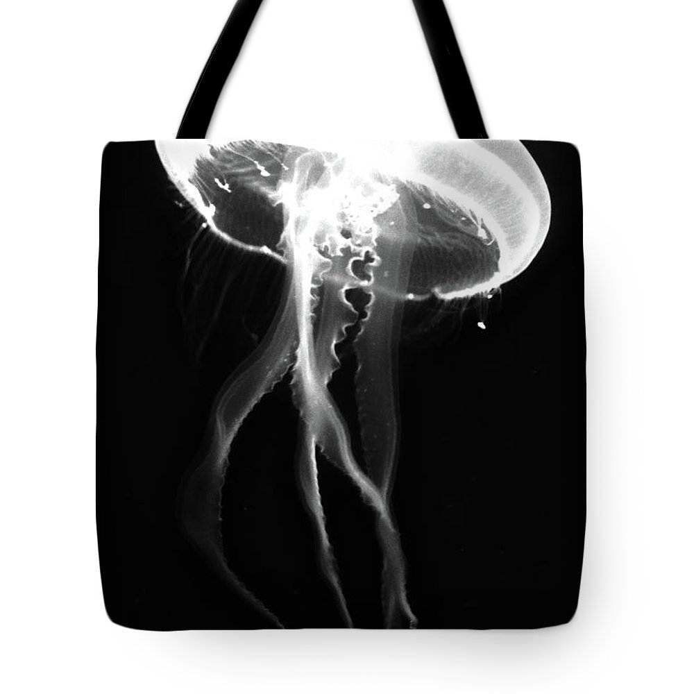 Jelly Fish Tote Bag featuring the photograph Black Jelly by David Stasiak
