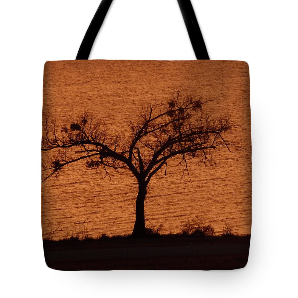 Tree Tote Bag featuring the photograph Black Lace Tree by Angela Wright