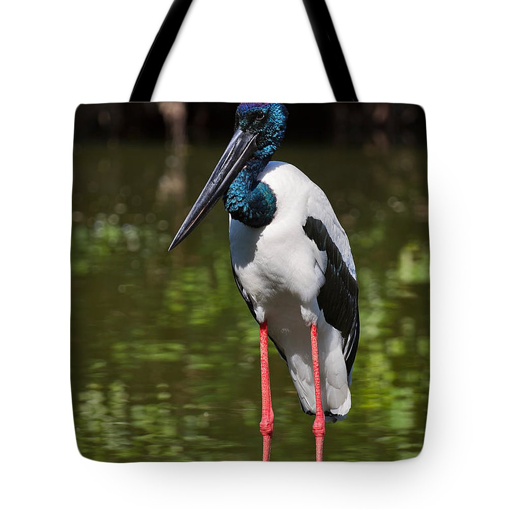 Birds Tote Bag featuring the photograph Black-necked Stork by Louise Heusinkveld