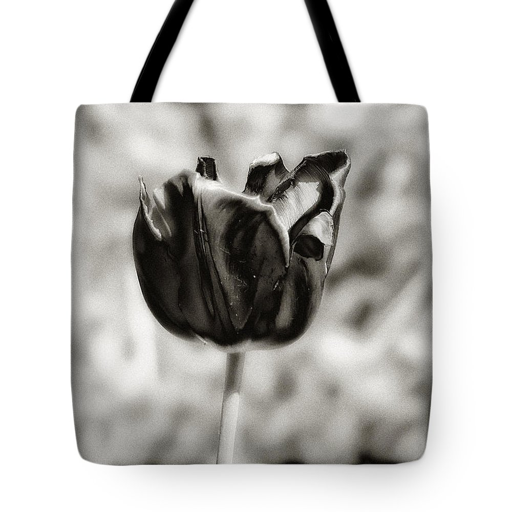 Flower Tote Bag featuring the photograph Black Tulip by Bill Cannon