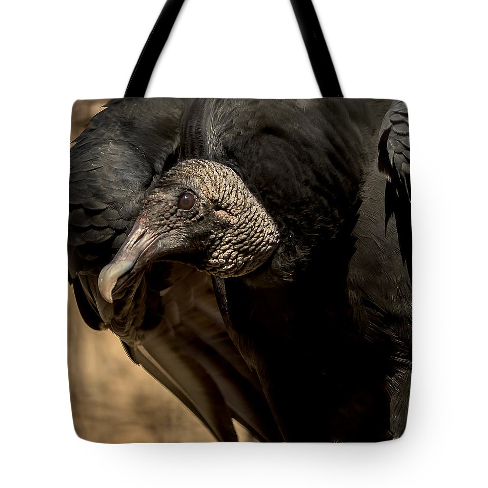 Black Vulture Tote Bag featuring the photograph Black Vulture 2 by David Pine