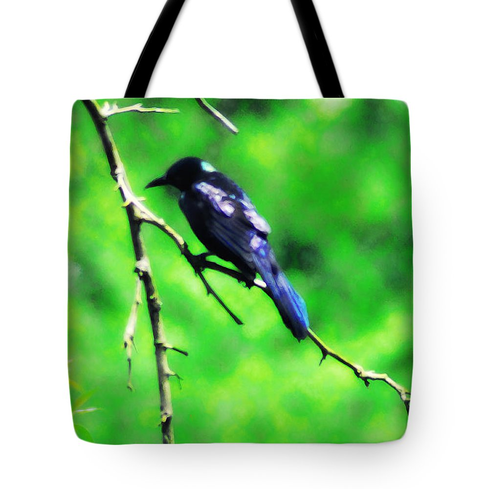 Bird Tote Bag featuring the photograph Blackbird by Bill Cannon