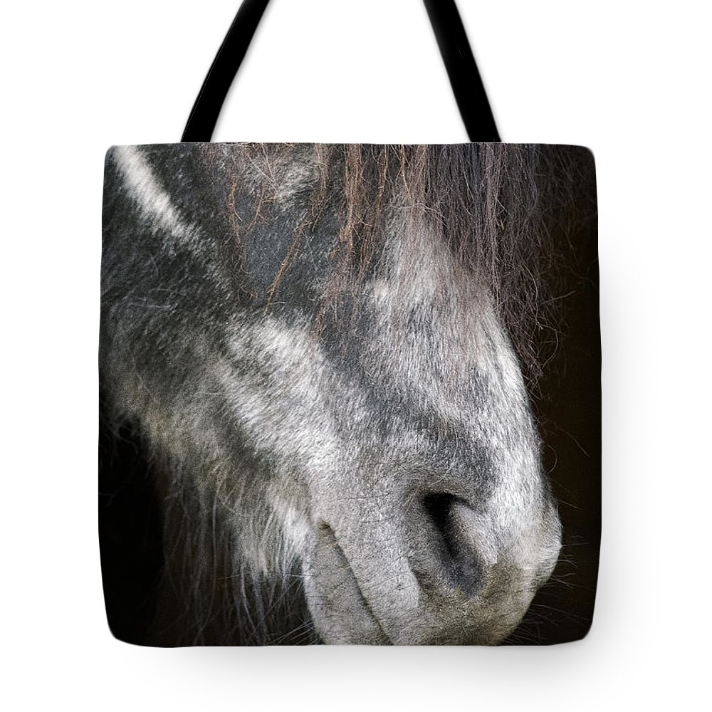 Horse Tote Bag featuring the photograph Blackie by Diane Hawkins