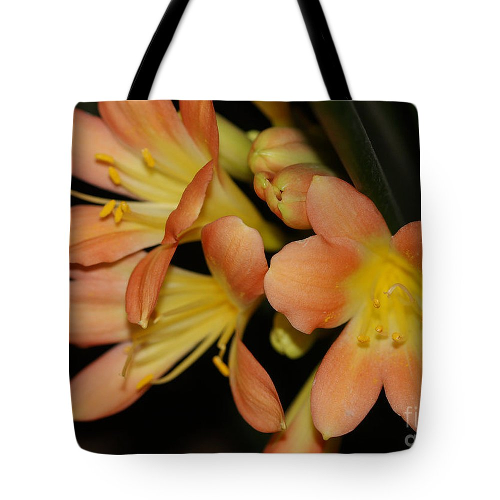 Flowers Tote Bag featuring the photograph Blast Of Sunshine by Deborah Benoit