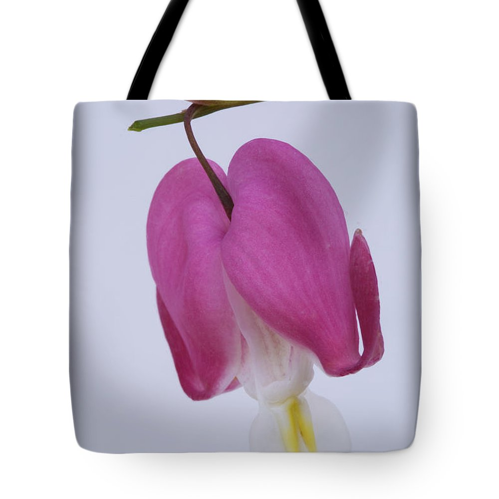 Macro Tote Bag featuring the photograph Bleeding Heart by Linda D Lester