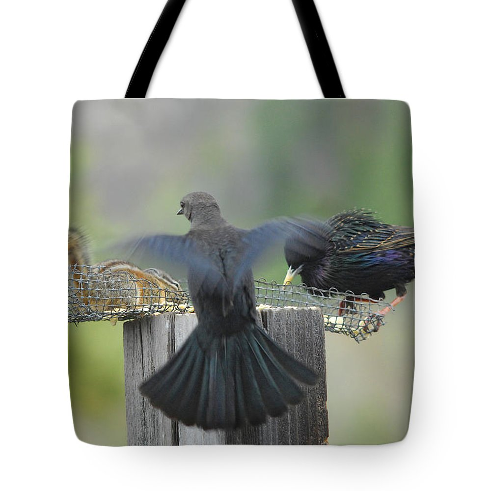 Bird Tote Bag featuring the photograph Bless This Meal by Donna Blackhall