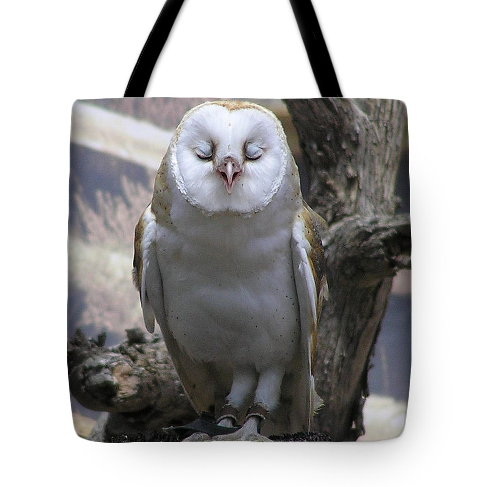 Barn Tote Bag featuring the photograph Blinking Owl by Louise Magno