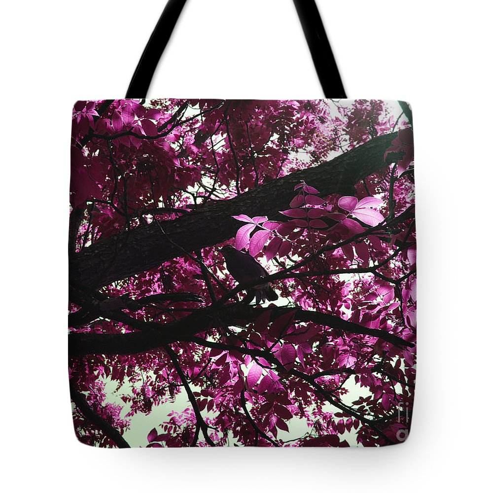 Beautiful Tote Bag featuring the photograph Blissful Morning by Sandra Gallegos