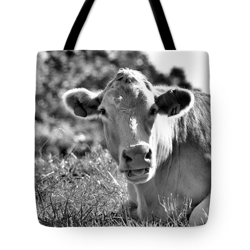 Animals Tote Bag featuring the photograph Blonde Babe by Jan Amiss Photography