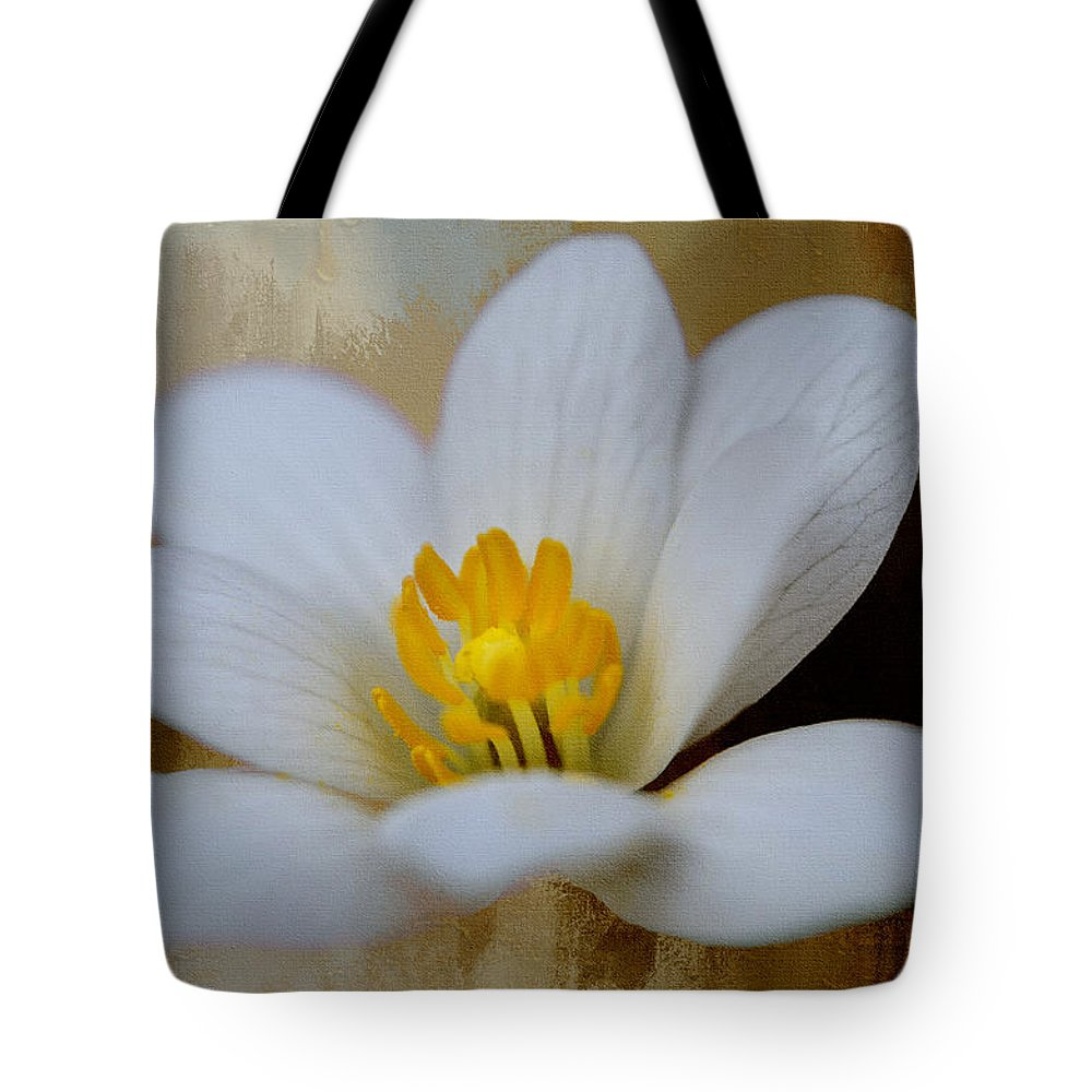 Flowers & Plants Tote Bag featuring the photograph Bloodroot by Diana Boyd