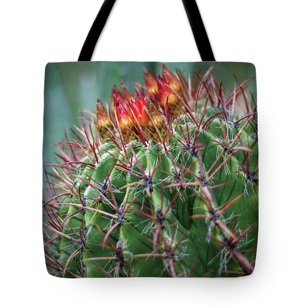 Blooming Cactus Tote Bag featuring the photograph Bloody Love by Martina Schneeberg-Chrisien