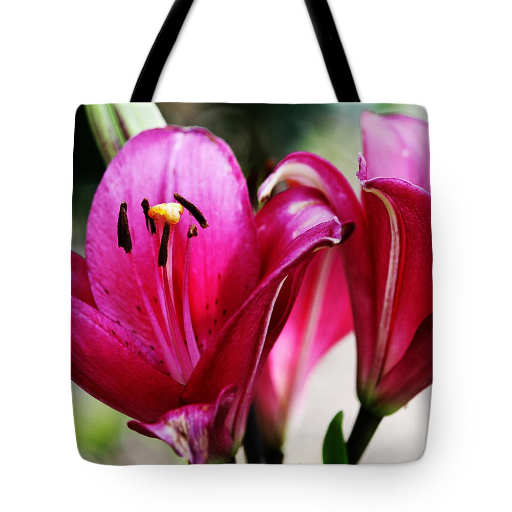 Pink Tote Bag featuring the photograph Bloom by Deana Connell