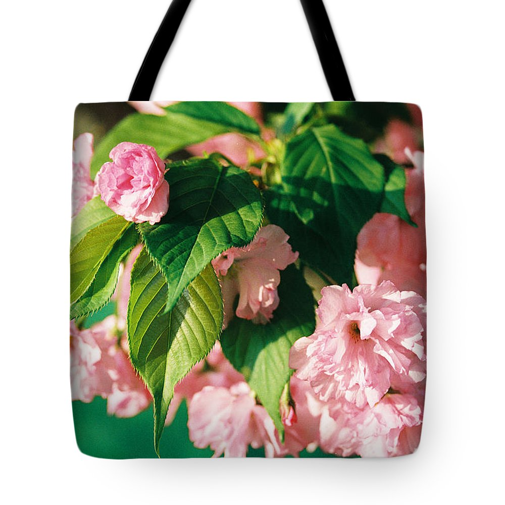 Spring Tote Bag featuring the photograph Bloom by Jonathan Michael Bowman