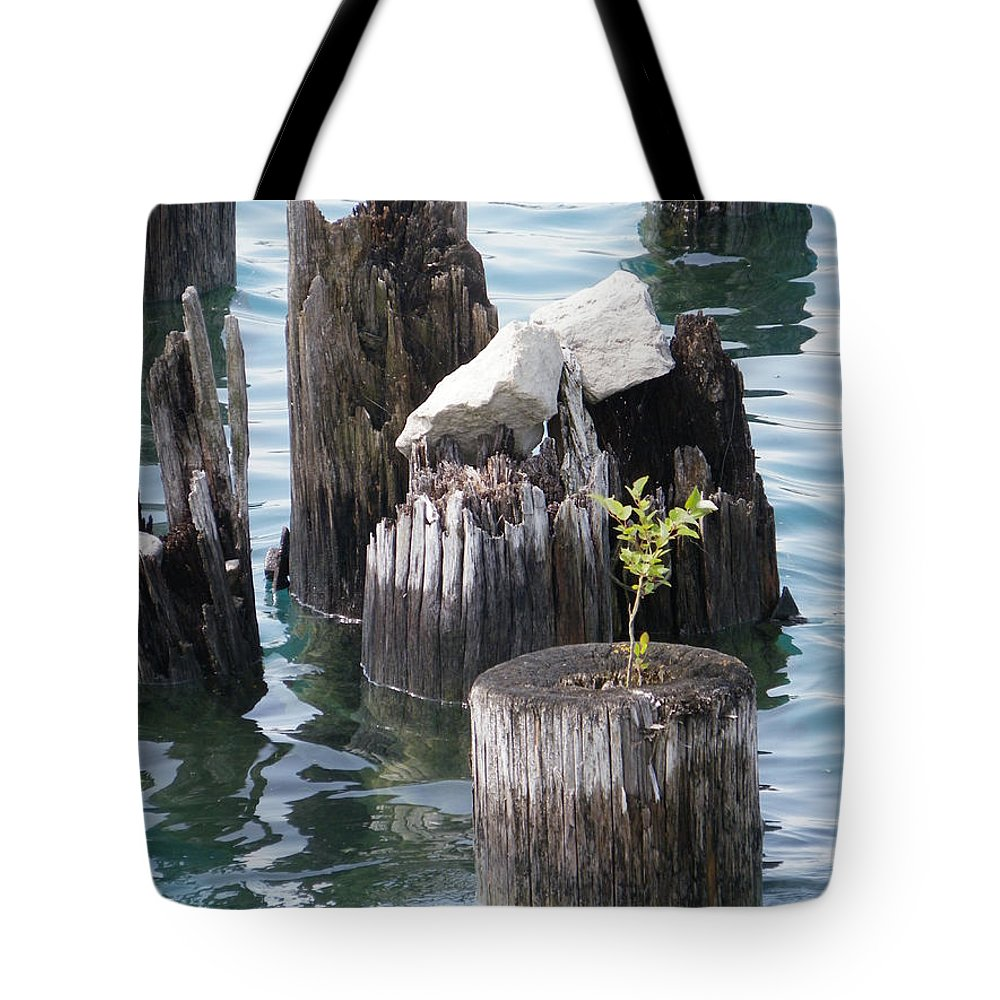 Nature Tote Bag featuring the photograph Bloom Where You Are Planted by Peggy King