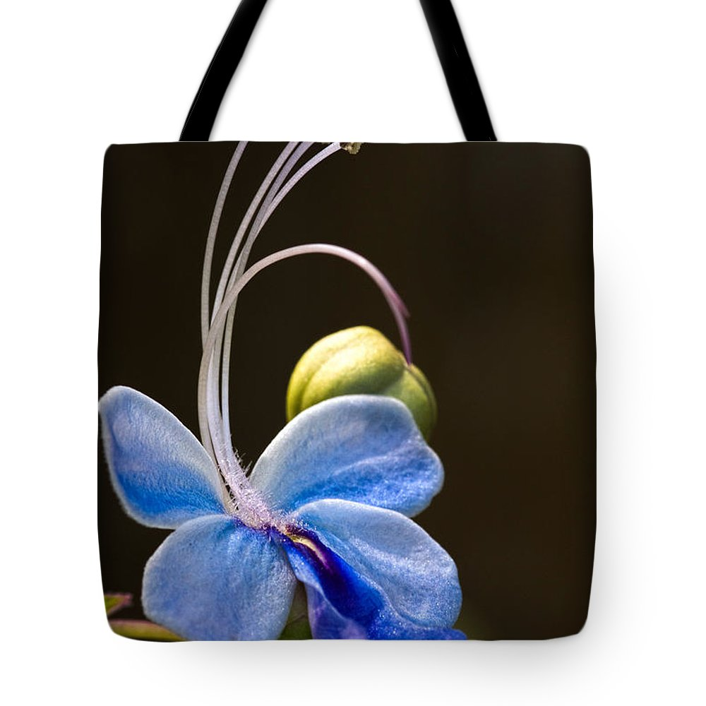 Flower Tote Bag featuring the photograph Blooming Butterfly by Christopher Holmes