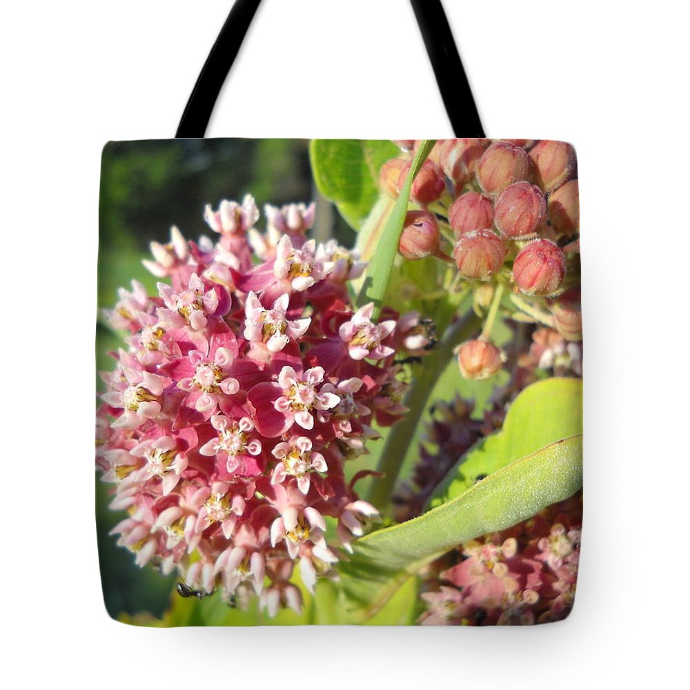 Close Up Tote Bag featuring the photograph Blooming Milkweed Flowers by Kent Lorentzen