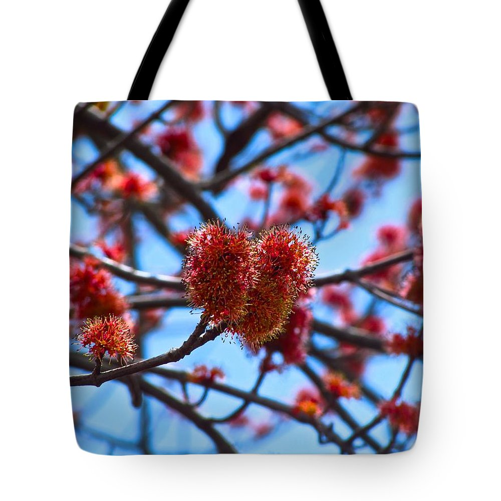Flowers Tote Bag featuring the photograph Blooming by Shannon McKenna