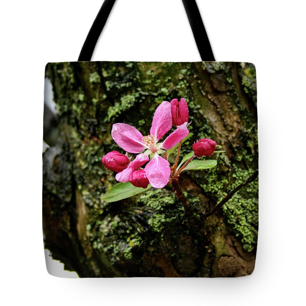 Flower Tote Bag featuring the photograph Blossom After Rain by Matt Sexton