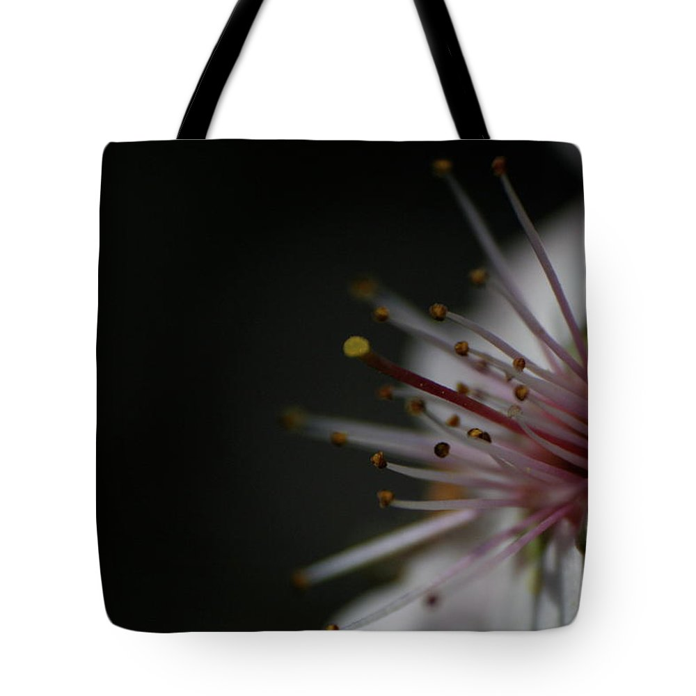 Blossom Angle Tote Bag featuring the photograph Blossom Angle by Dylan Punke
