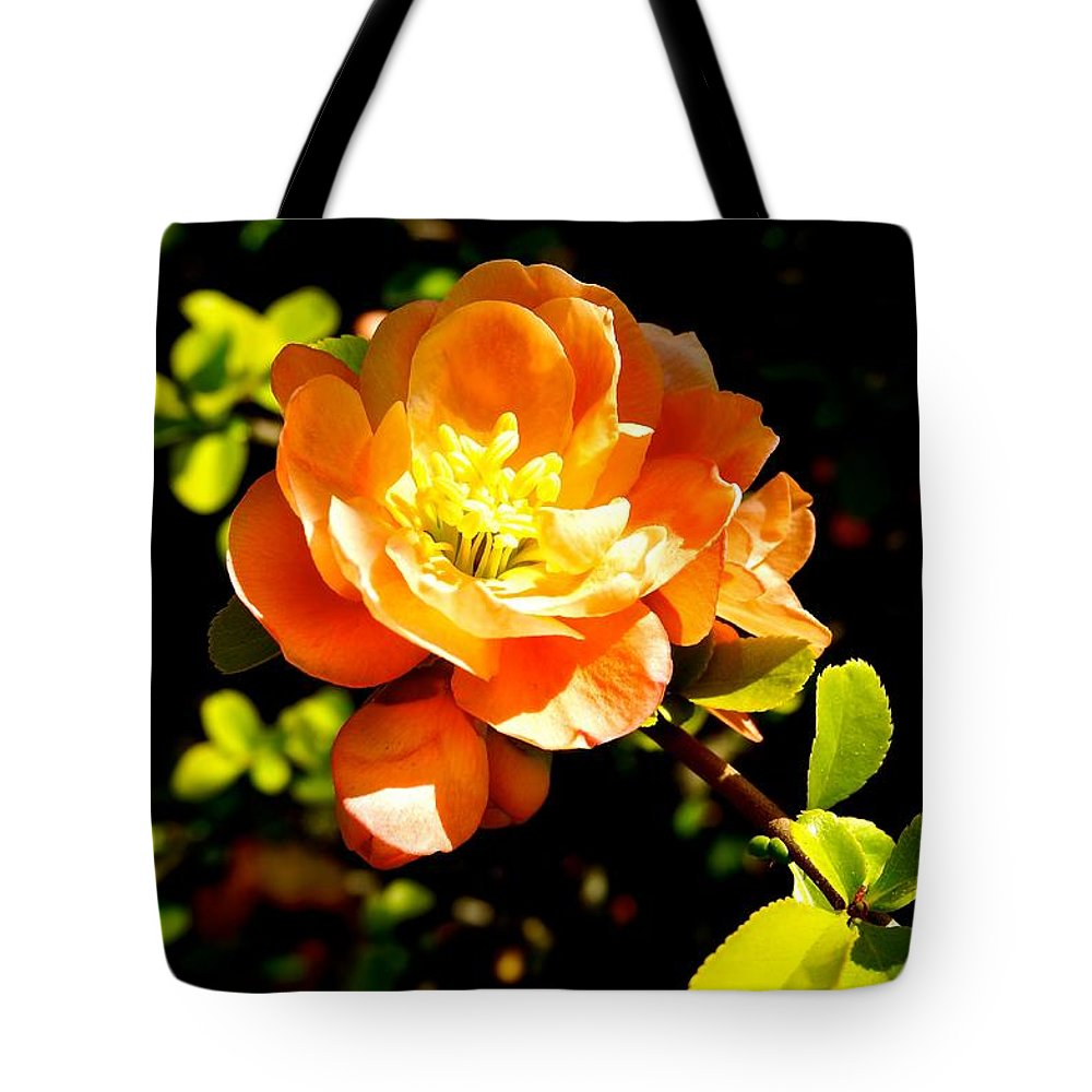 Flower Tote Bag featuring the photograph Blossom by Ivana Kovacic