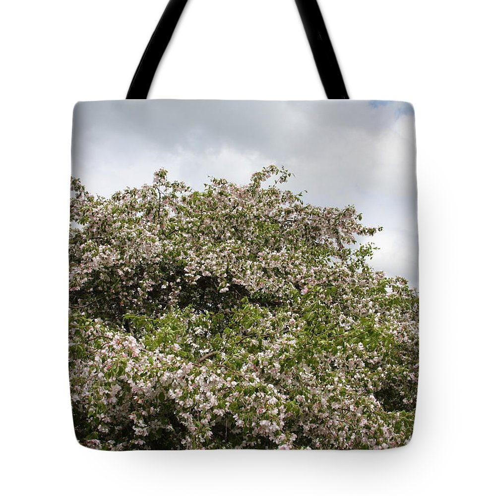 Tree Tote Bag featuring the photograph Blossoming Tree by Michelle Miron-Rebbe