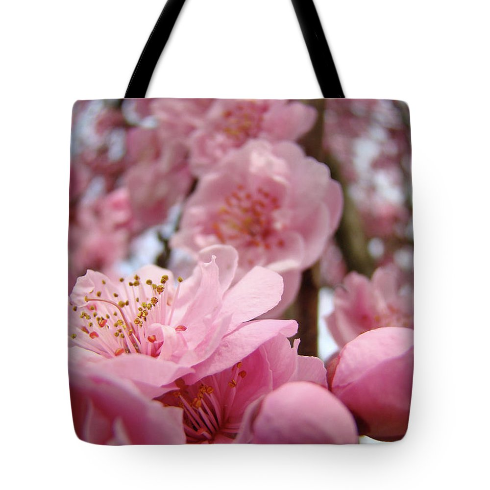 Blossom Tote Bag featuring the photograph Blossoms Art Print Pink Spring Blossom Baslee Troutman by Baslee Troutman