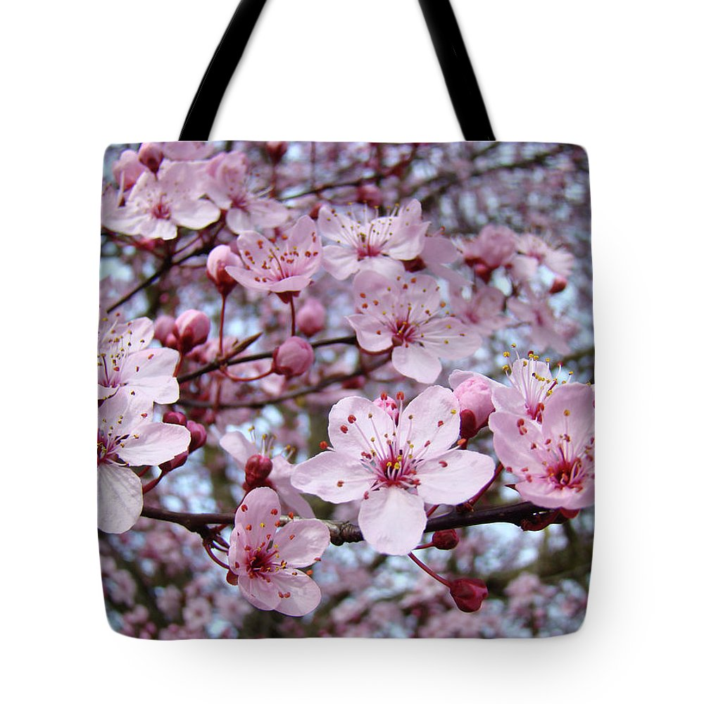 Blossom Tote Bag featuring the photograph Blossoms Art Prints Nature Pink Tree Blossoms Baslee Troutman by Baslee Troutman