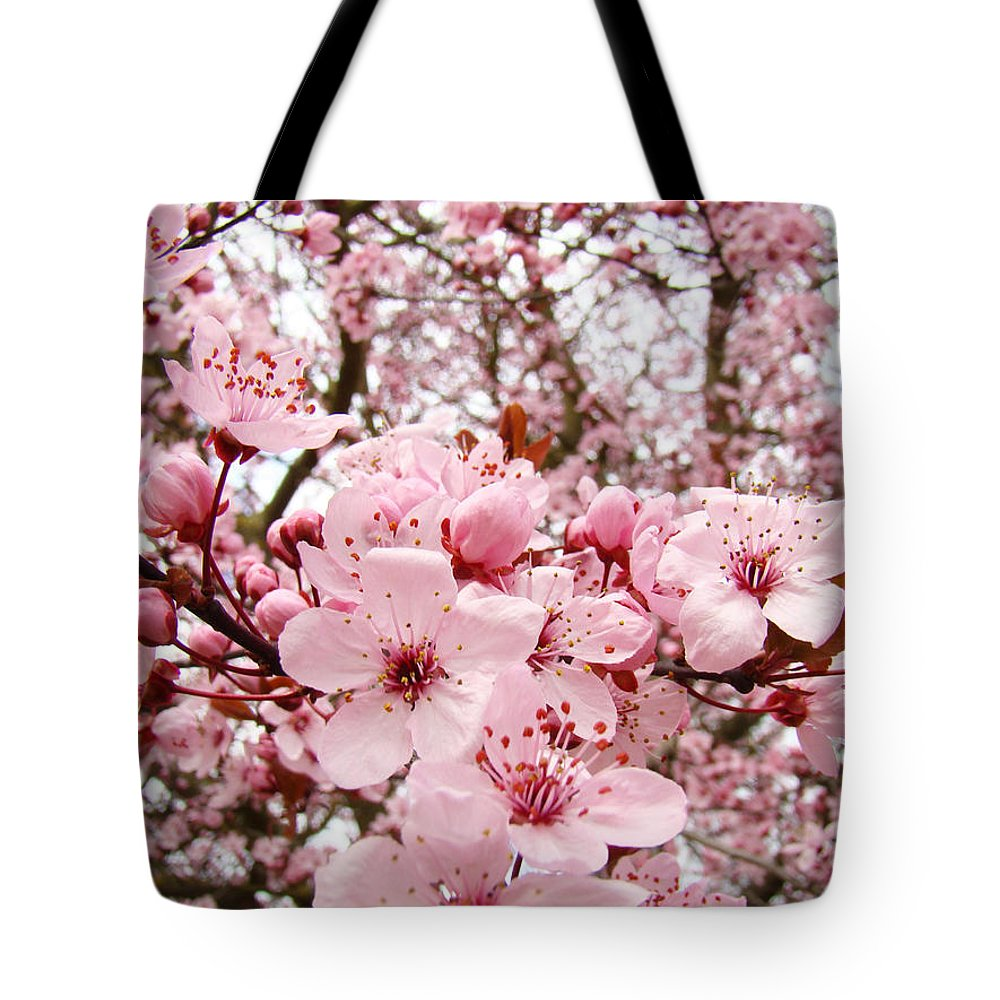 Blossom Tote Bag featuring the photograph Blossoms Art Spring Pink Tree Blossom Floral Baslee Troutman by Baslee Troutman