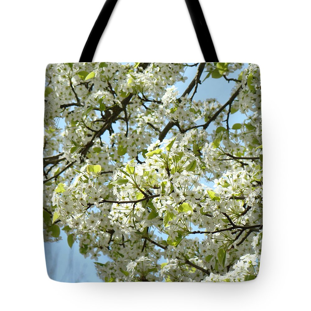 �blossoms Artwork� Tote Bag featuring the photograph Blossoms Whtie Tree Blossoms 29 Nature Art Prints Spring Art by Baslee Troutman