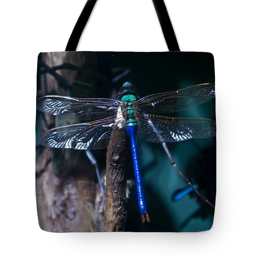 Blue Tote Bag featuring the photograph Blue And Green Dragonfly by Douglas Barnett