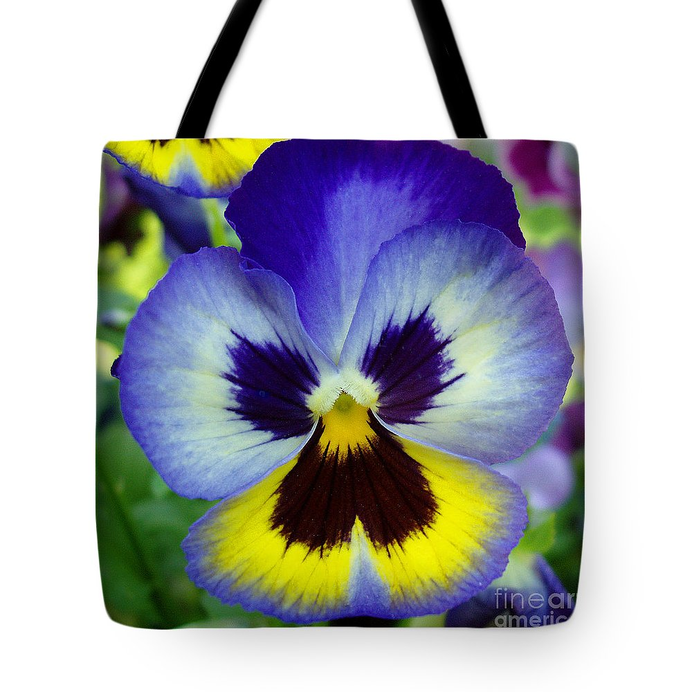 Flowers Tote Bag featuring the photograph Blue And Yellow Pansy by Nancy Mueller