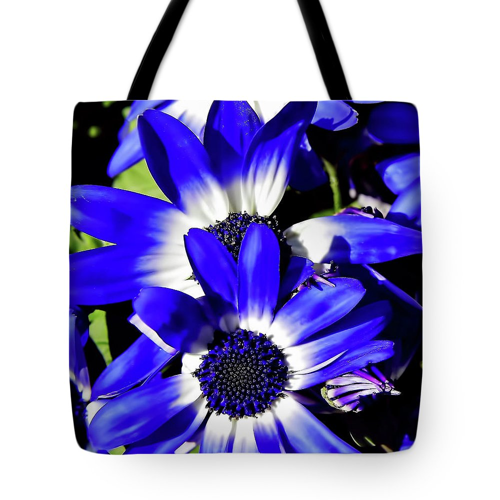 Daisy Tote Bag featuring the photograph Blue Beauties by D Hackett